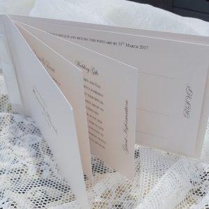 inside a cheque book invitation