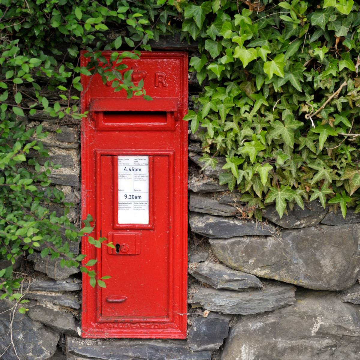 red royal mail post box with greenery around it